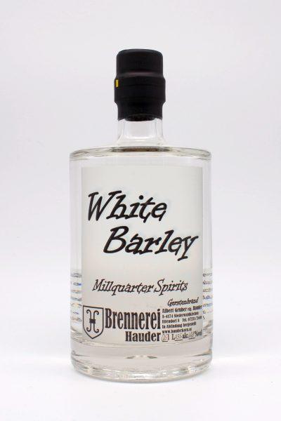 White Barley